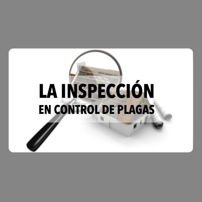 La inspección en control de plagas